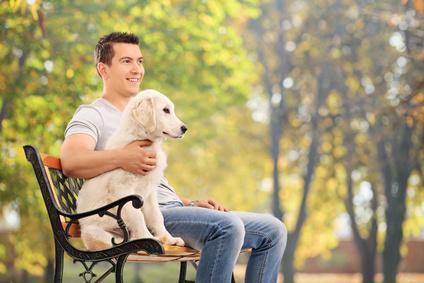 Hundesofa aus Holz online kaufen